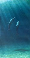 learn to paint a dolphin family like this one with Mark's downloadable tutorial (V-Log) Dolphin Family - Underwater