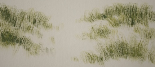 Dry Brush Technique - Step 2 - an exercise to create spinifex grass.