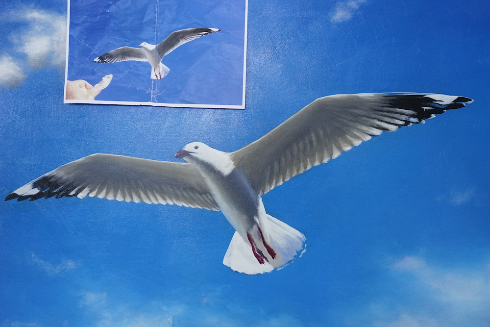 Mark Waller seagull painting, work in progress.