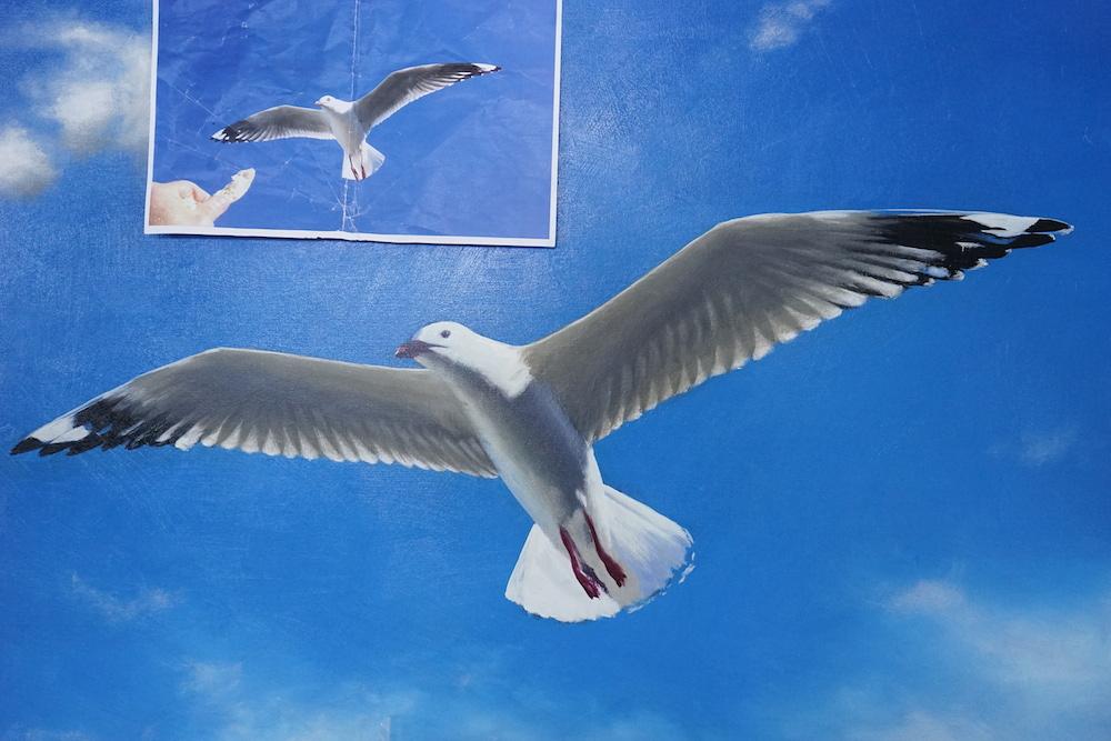 Mark Waller seagull painting, work in progress.