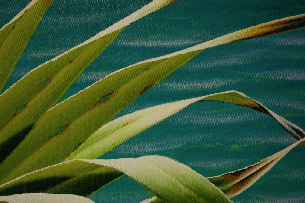 Mark Waller's painting pandanus - holes in the leaves