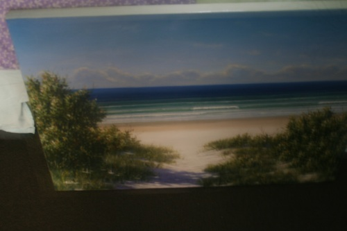 This is a bad photo!  Poor lighting and focus, crooked edges etc.  Take the time to photograph your work well!