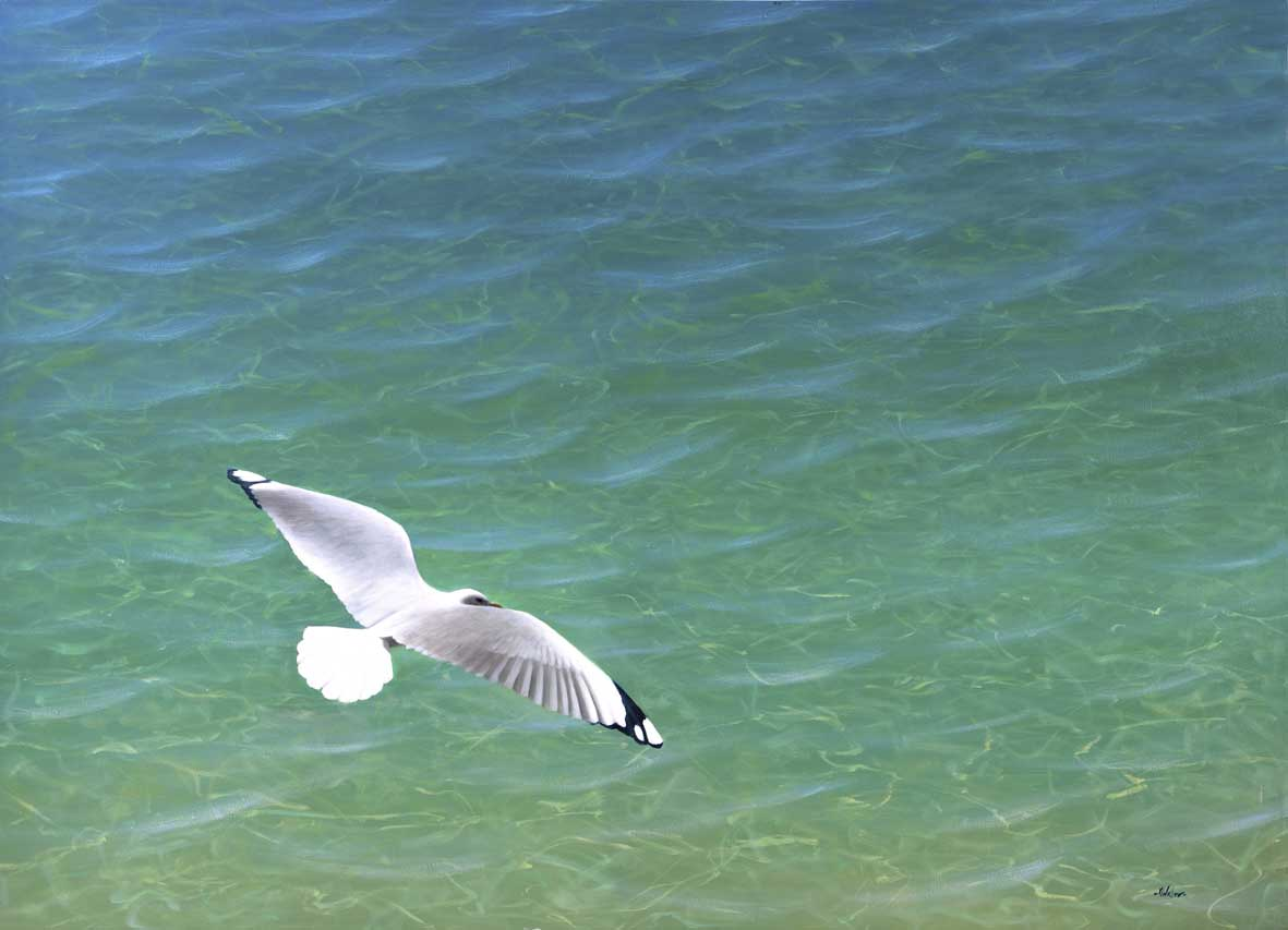 Mark Waller's seascape painting, Jonathan Livingston Seagull Contemplates His Mortgage, seagull gliding over cool clear water.