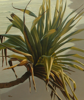Mark Waller's beachscape painting, Convergence, dancing pandanus in afternoon light.