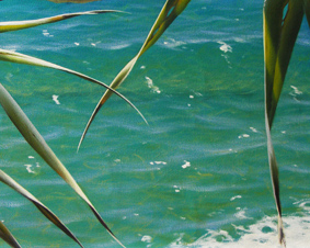 Mark Waller's seascape painting, clear, cool, inviting water.