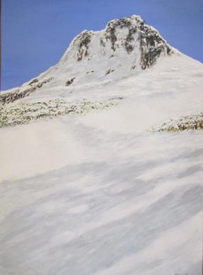 Tasmanian Snow