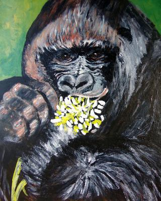 Co Co the Gorilla