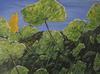 Sunlight on Geranium Leaves