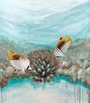Ningaloo Reef: Threadfin Butterfly