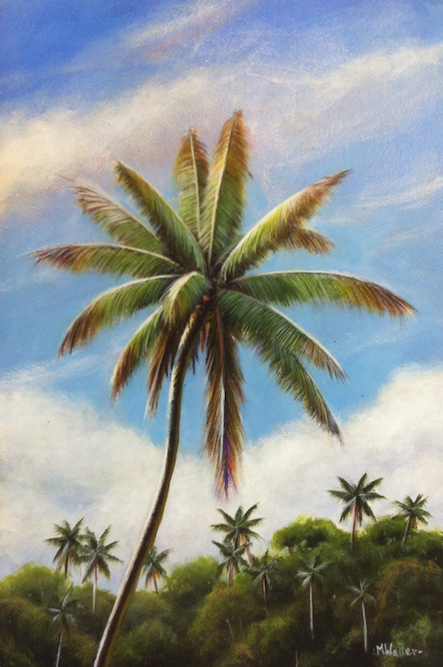 Palm trees are synonymous with the tropics!