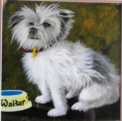 Walter The Wonder Dog