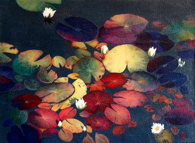 Waterlily Leaves in Dappled Light