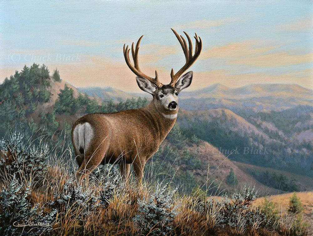 Muley Badlands by Chuck Black