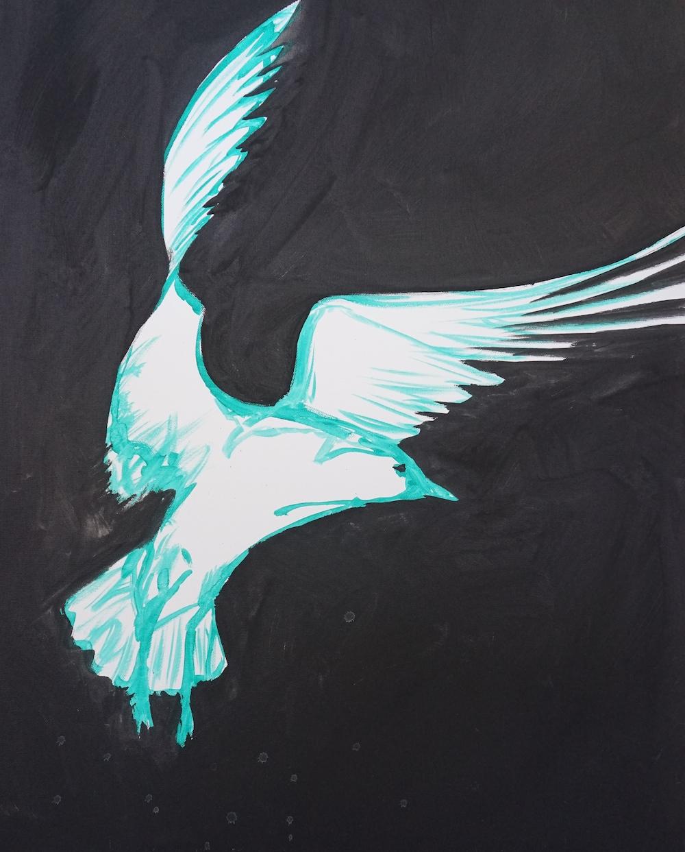 Mark Waller's seagulls