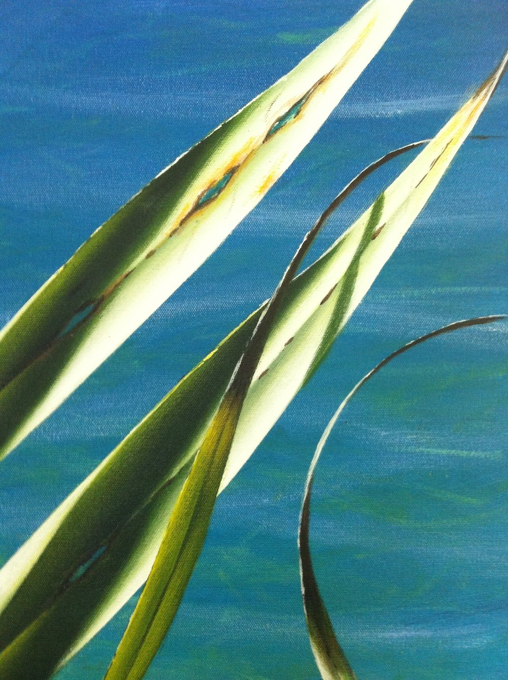 Mark Waller's painting pandanus, finished leaves
